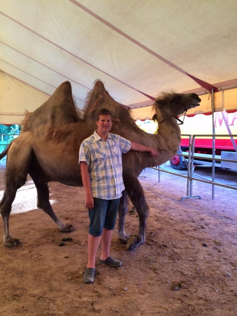 markus kamel